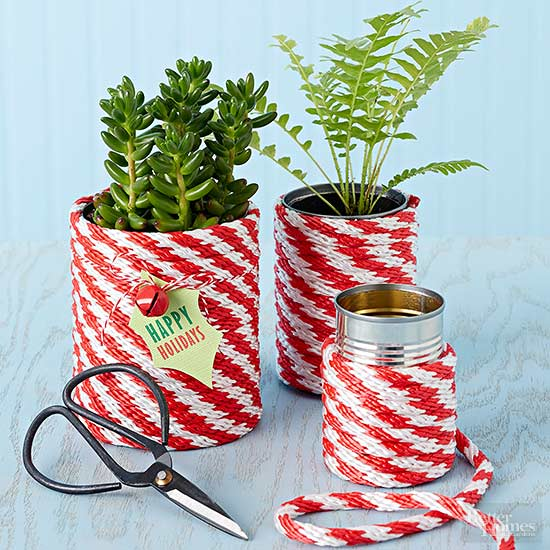 Festive Holiday Planters