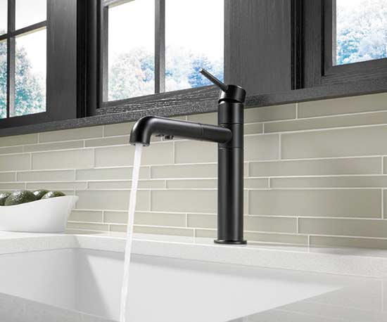 Wayfair-Trinsic Single Handle Faucet