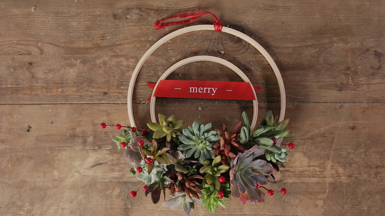 How to Make a Succulent-Filled Embroidery Hoop Christmas Wreath