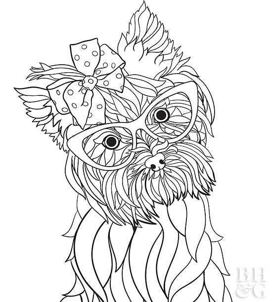 yourkie doags coloring pages | Pet Coloring Pages | Better Homes & Gardens