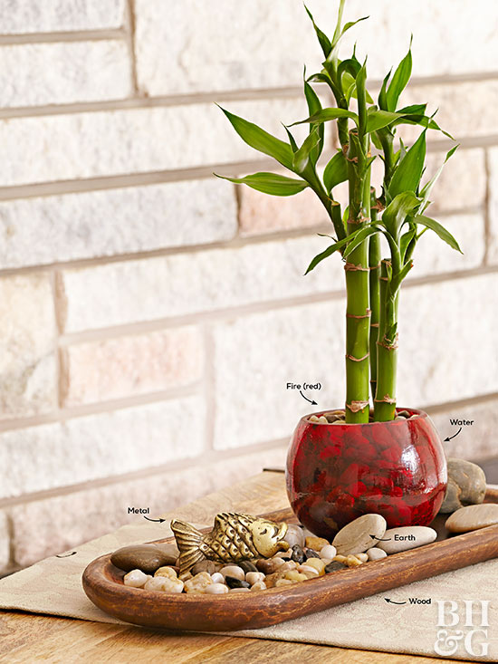 Indoor Bamboo Plants for Peace