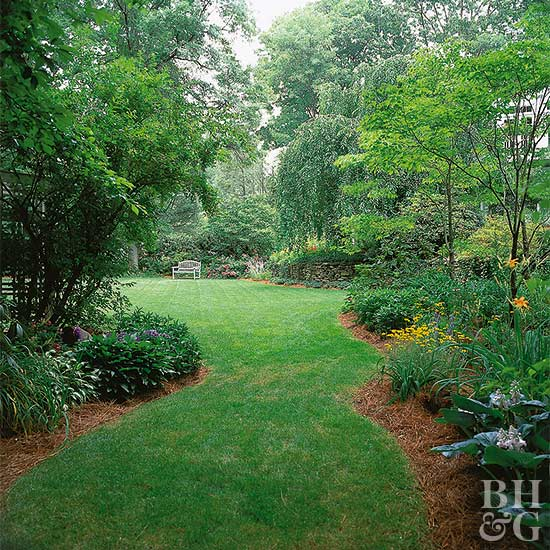 Captivating Wake Up Your Yard With Spring Lawn Care