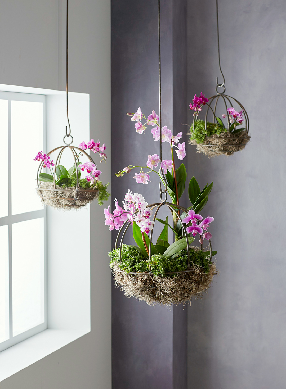 Diy Indoor Hanging Plant Holders Better Homes Gardens