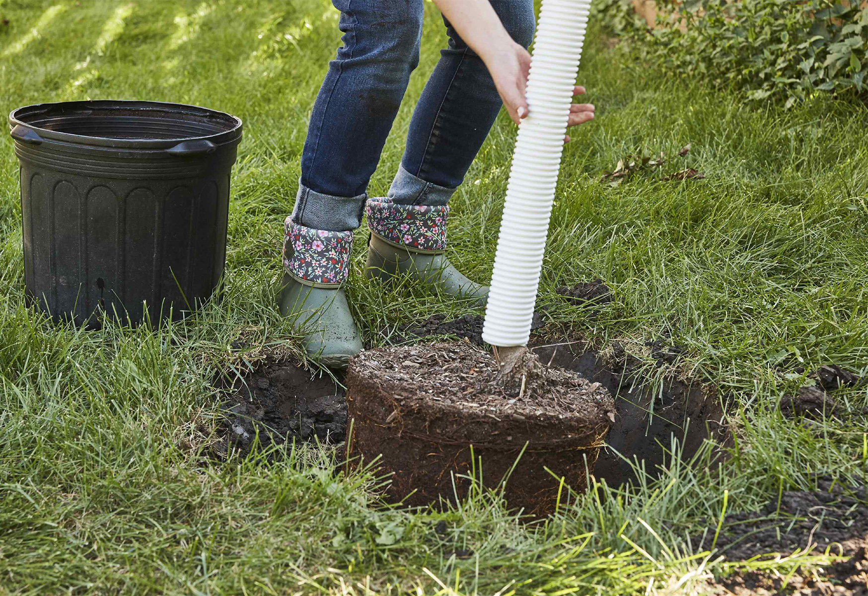 The Proper Way to Plant a Tree | Better Homes & Gardens