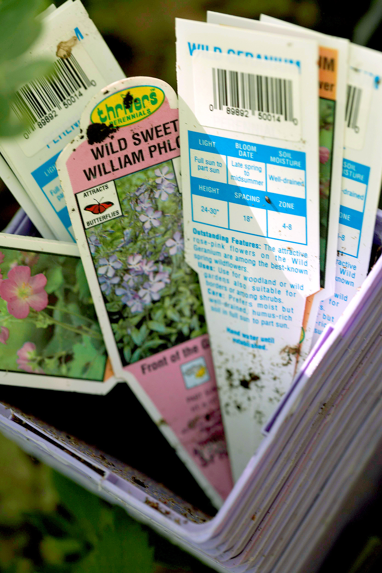 Understanding Information On Plant Tags