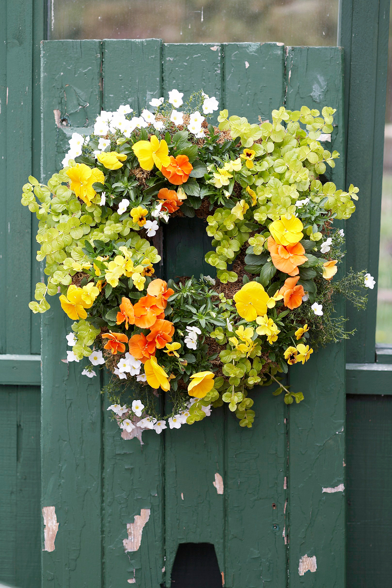 How to Make a Flowering Living Wreath