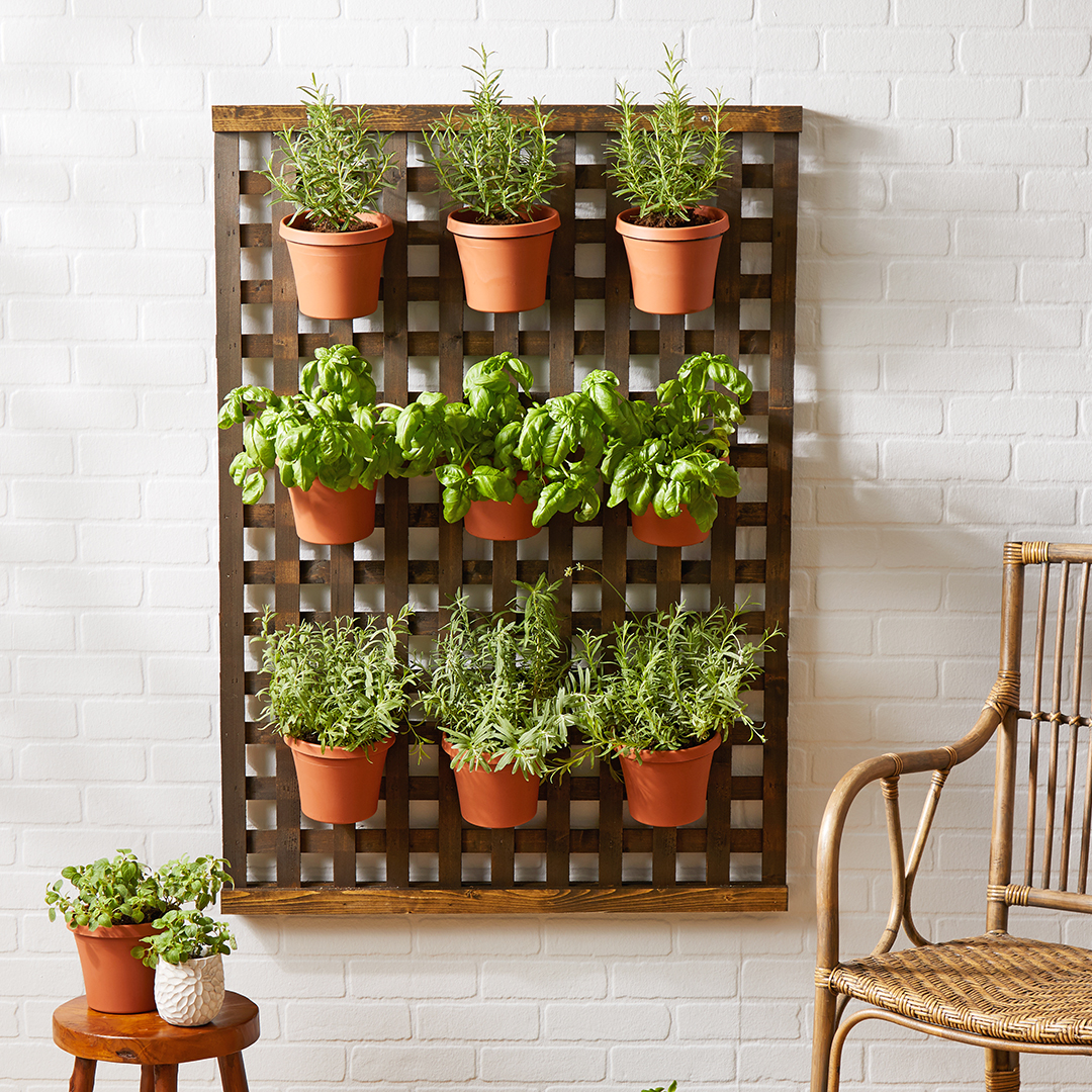 How to Make a Lattice Plant Hanger