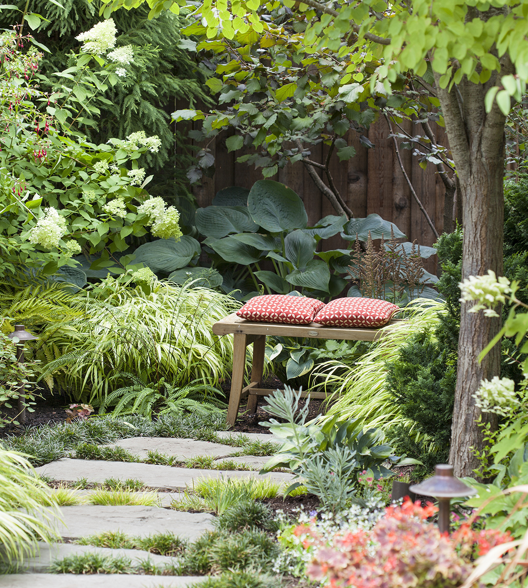 bench with pillows on garden path