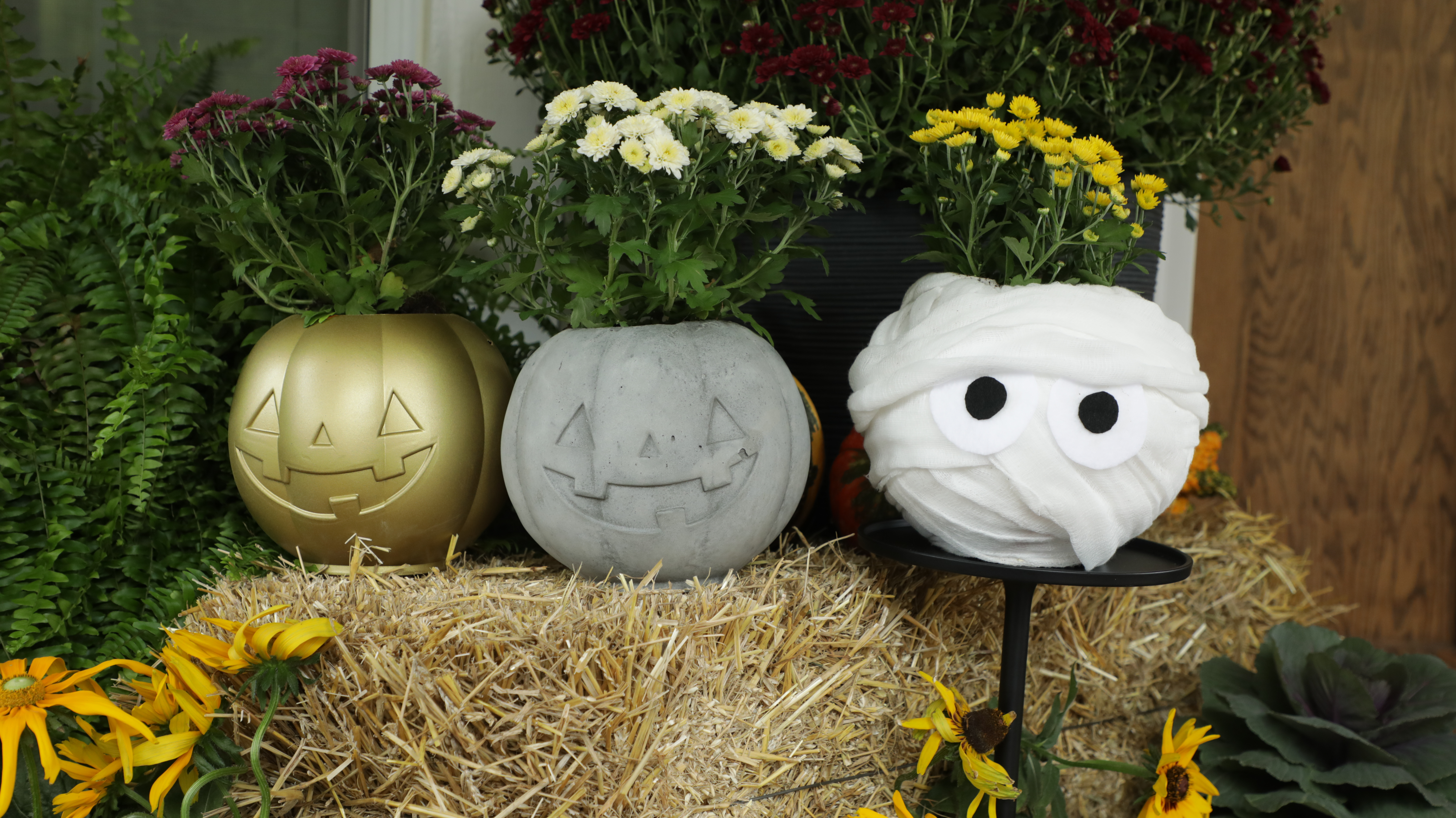 3 Ways to Turn Cheap Pumpkin Buckets into Festive Planters