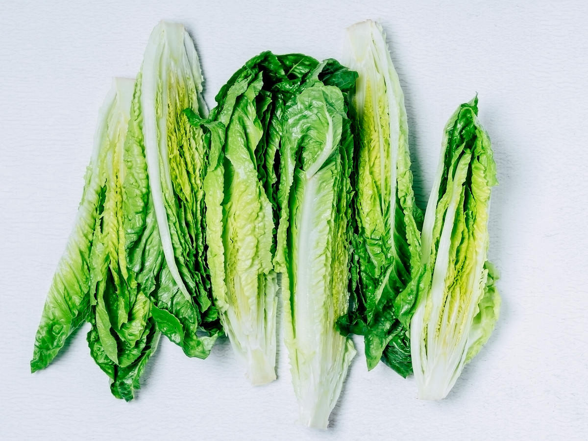 Five heads of romaine lettuce on a white table