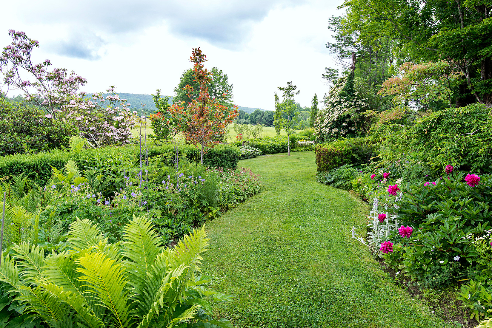 landscaped garden view of winding path