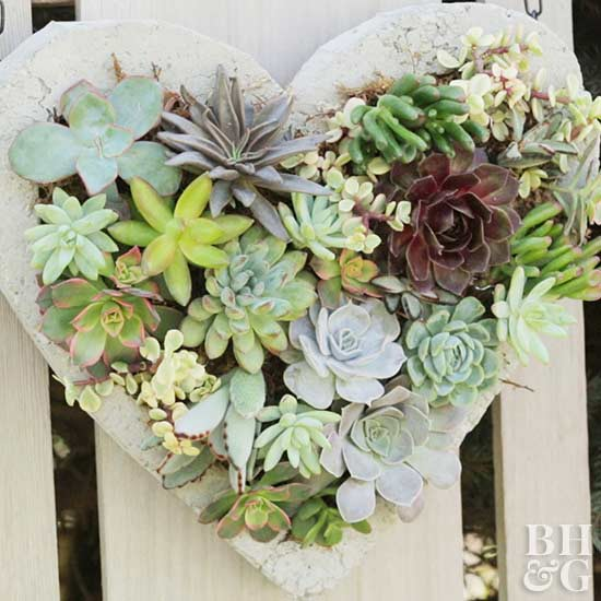 Hanging Succulent Heart Planter