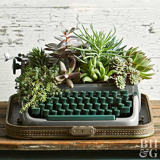 13 Creative Succulent Containers From Upcycled Thrift Store & Salvaged Finds