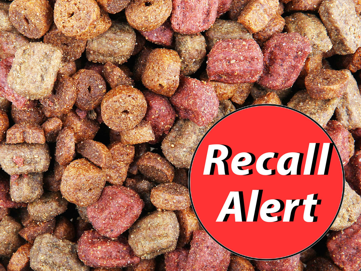Multiple Dog Food Brands Recalled for Toxic Levels of Vitamin D, Salmonella