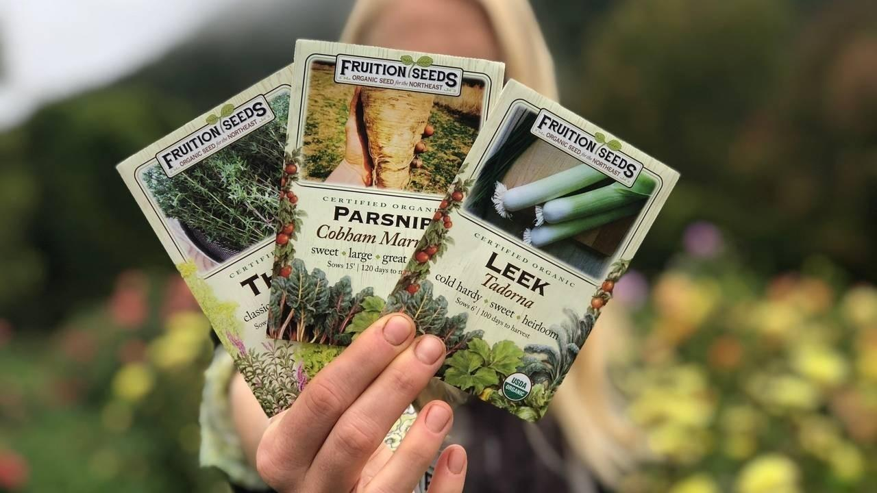 Woman holding fanned out seed packets from Fruition Seed for leeks, parsnips and thyme
