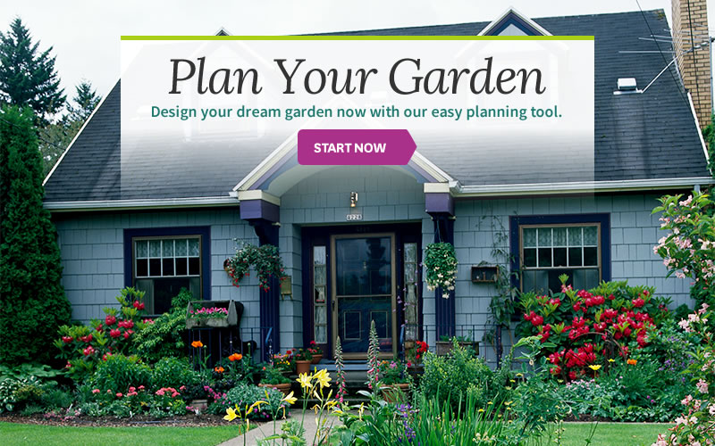 Free Interactive Garden Design Tool | Better Homes