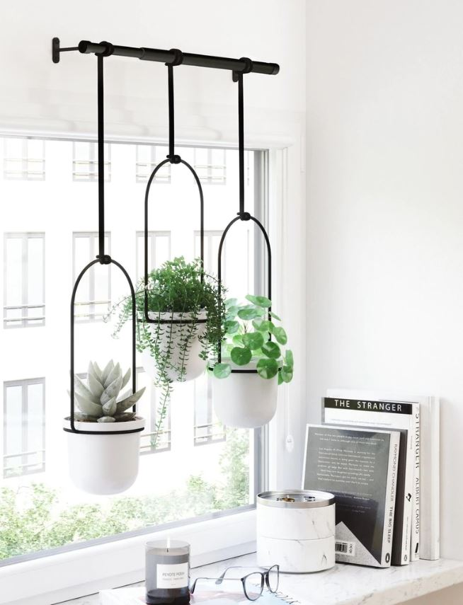 hanging planters in front of window