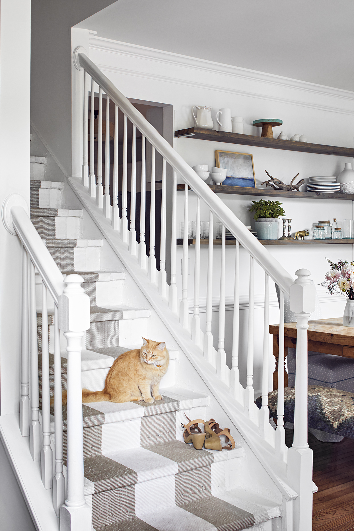 white stairs with carpet runner and cat