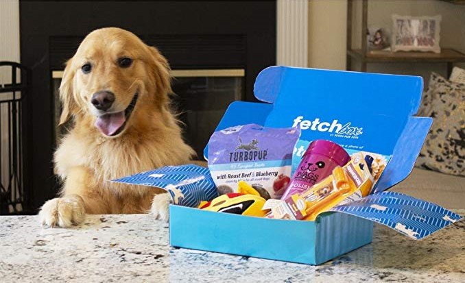 Blue cardboard box on a kitchen counter with a dog sitting next to it