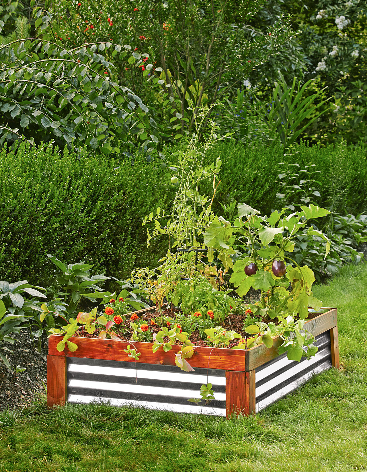Why You Need a Raised Garden Bed | Better Homes & Gardens Raised Herb Garden Planter Designs on vertical garden planter, raised flower planter, raised redwood planter boxes, raised patio planter,