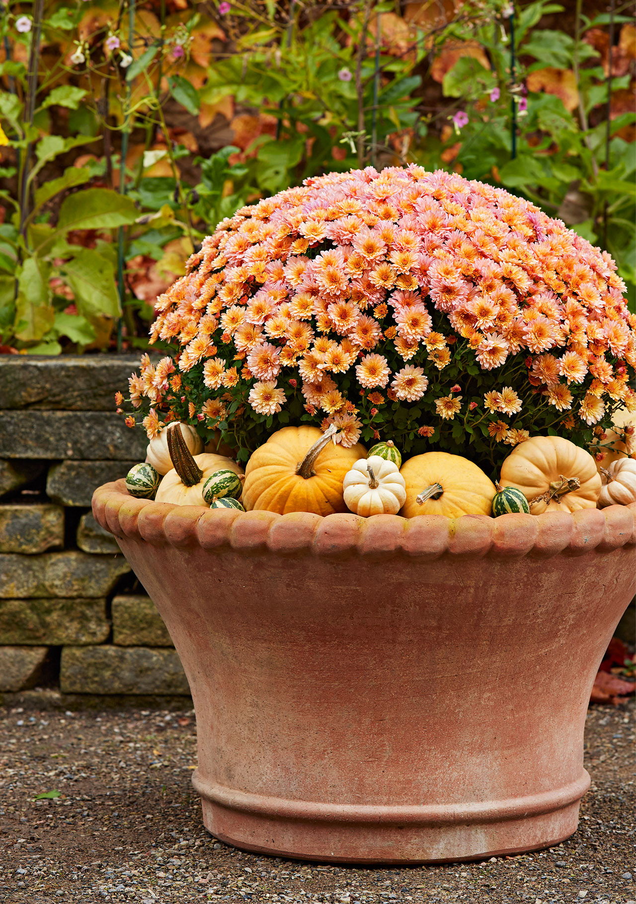 mums and pumpkins in planter for a fall display