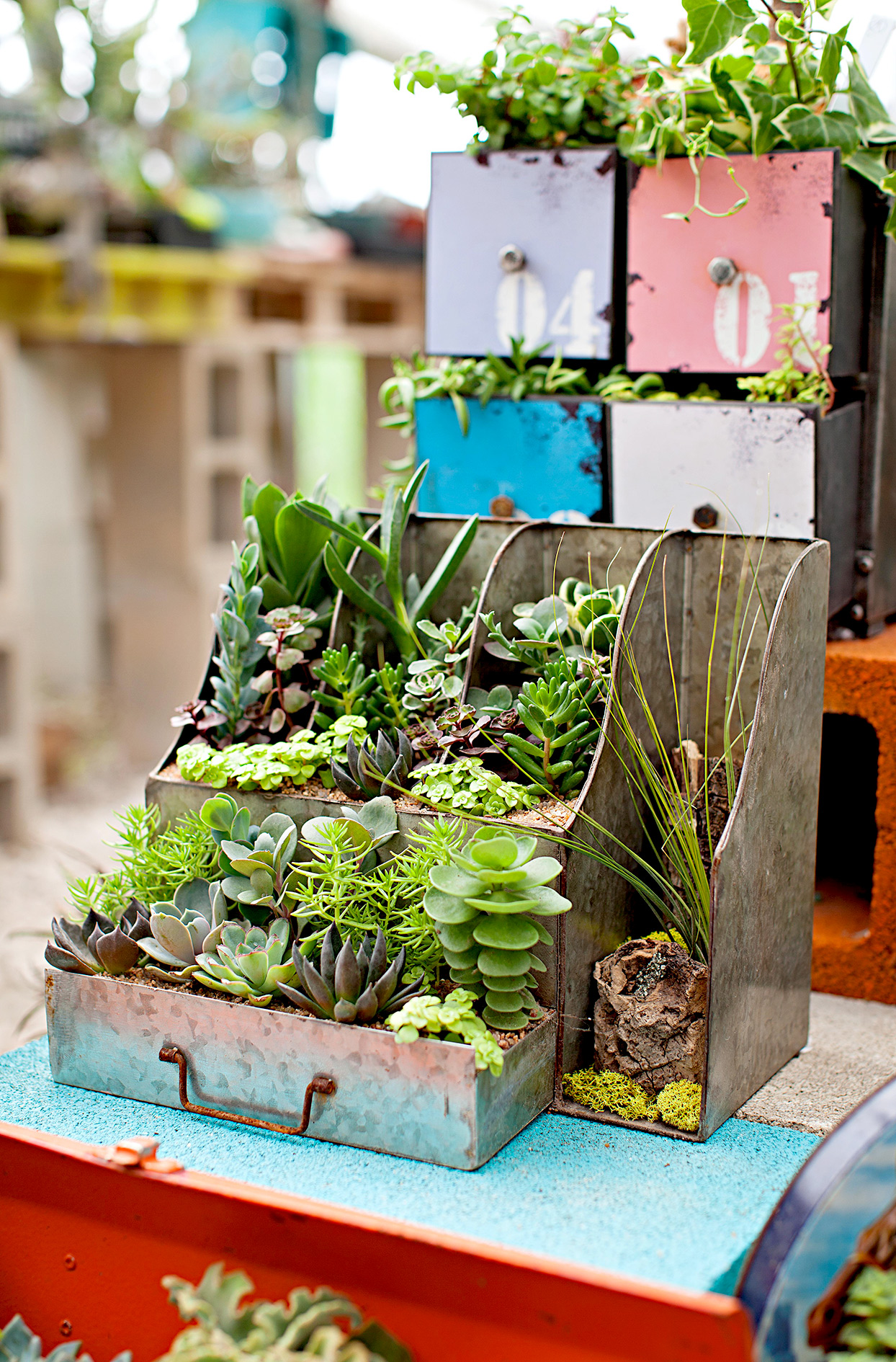 Desk caddy used as planter