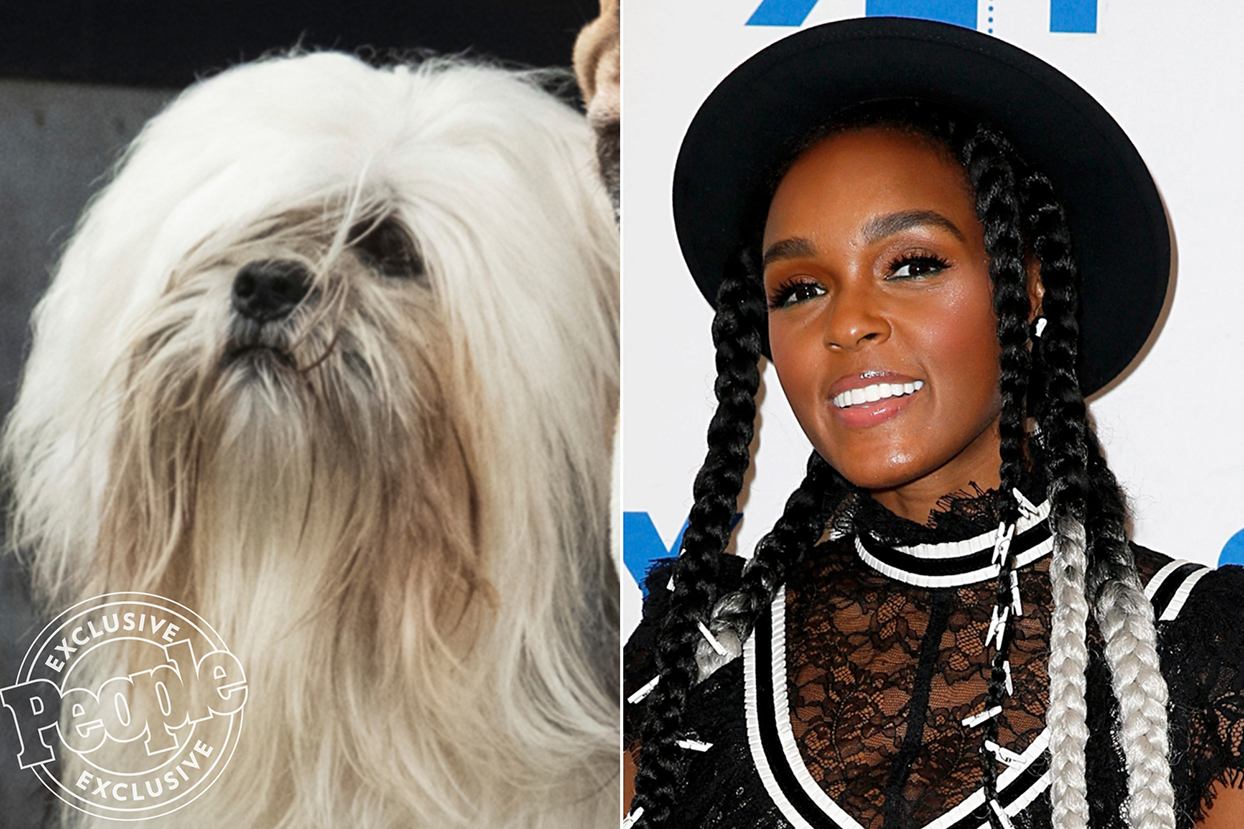 janelle monae and the dog playing Peg