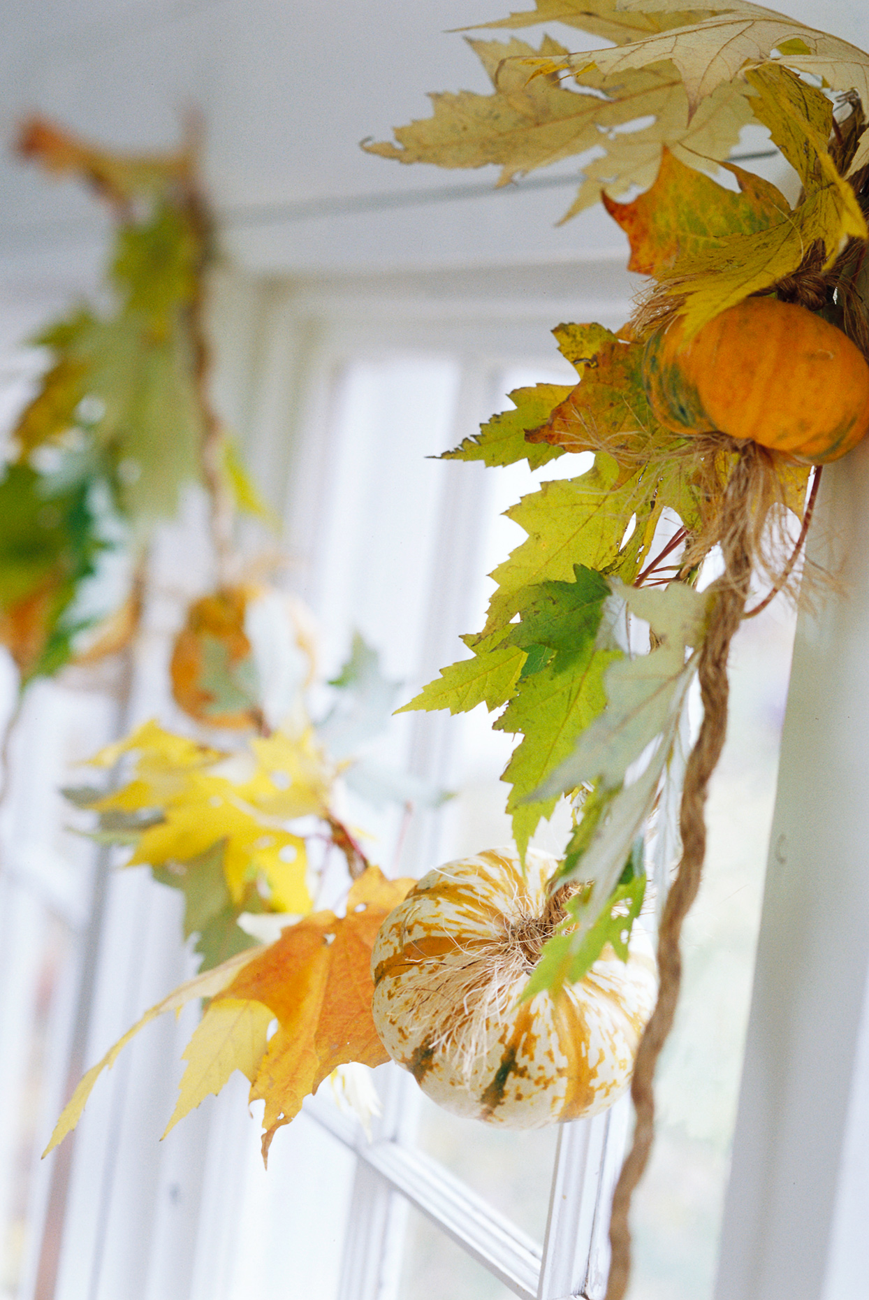 garland of leaves and gourds framing window