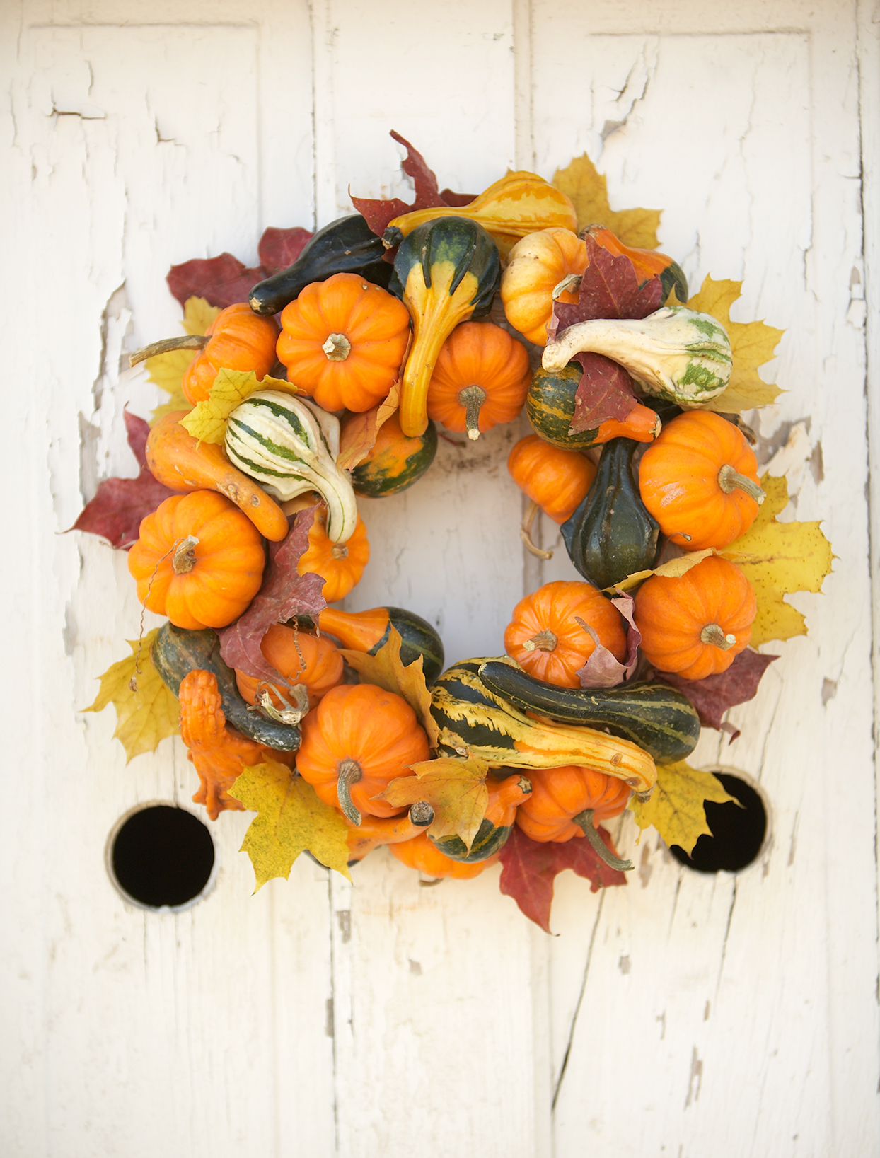 multi-colored gourd wreath with leaves