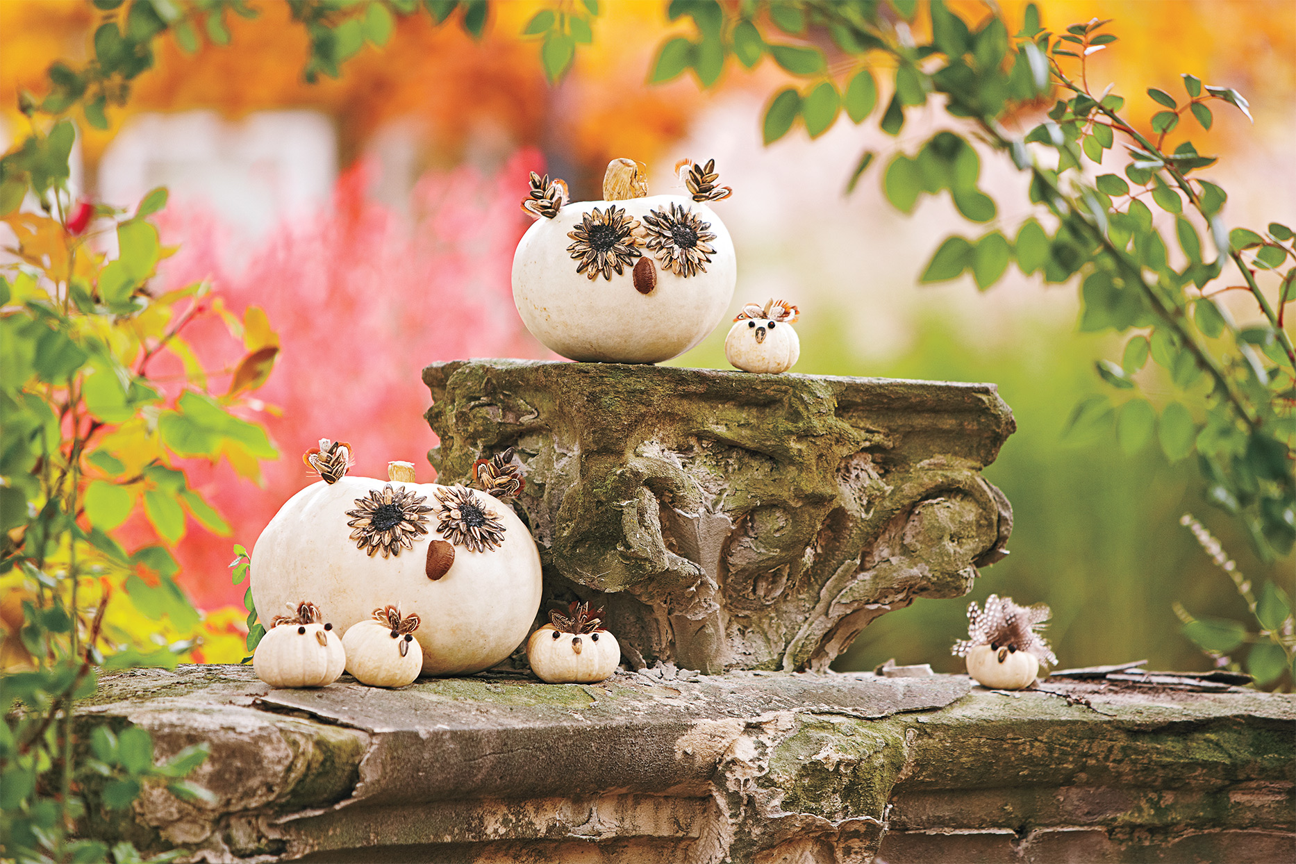 white pumpkins with crafted eyes