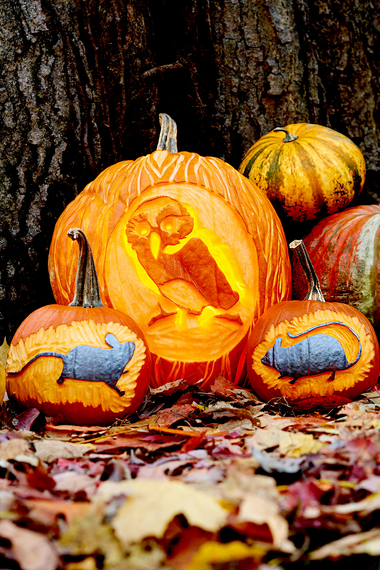 The Most Iconic Halloween Pumpkin Stencils