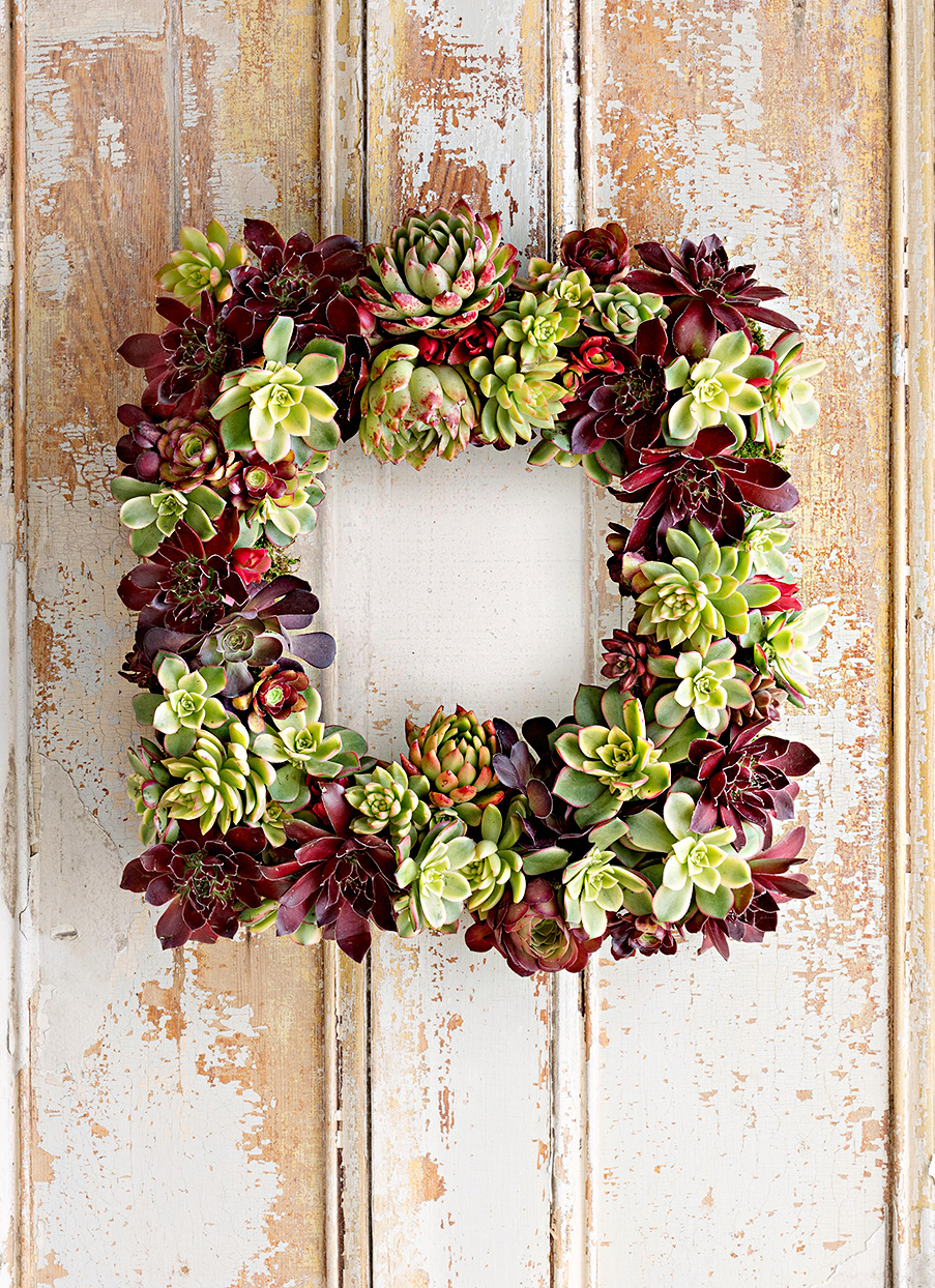 Square wreath with succulents