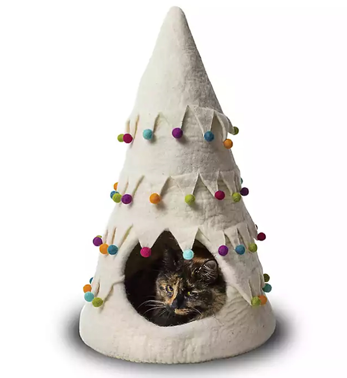 Are Christmas Trees Bad For Cats: Wool News, Articles, Stories & Trends For Today