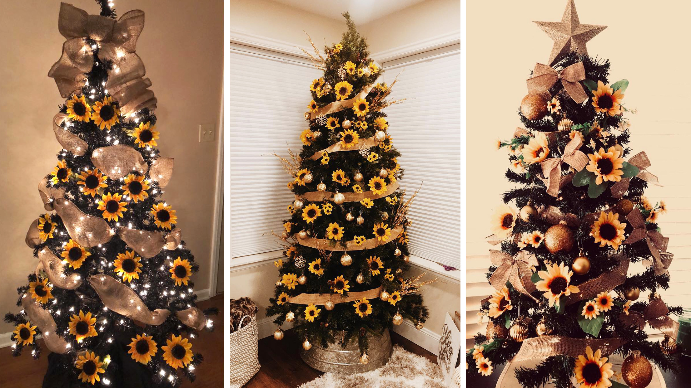 According To Pinterest, Sunflower Trees Are The Latest