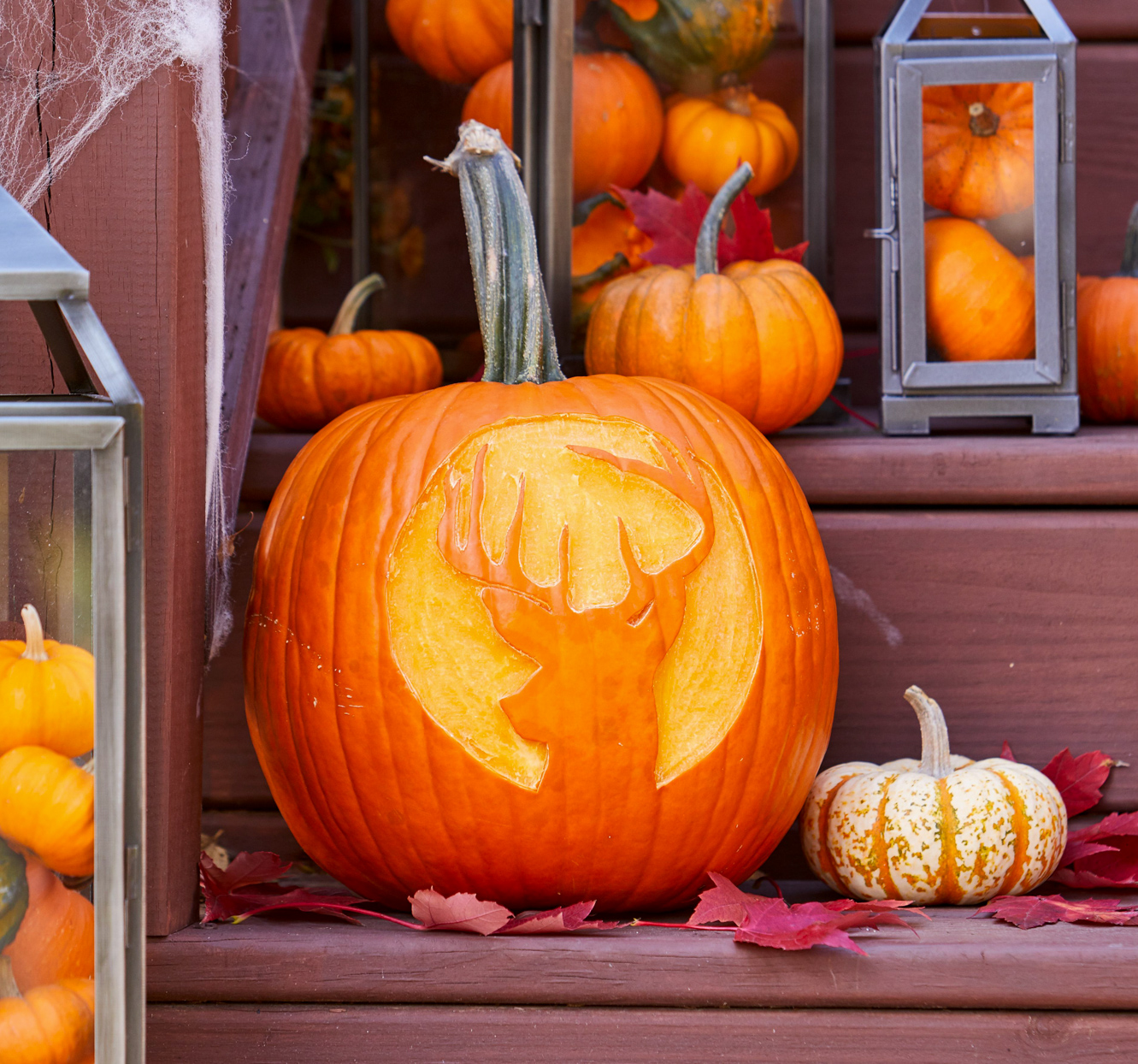 39 Free Pumpkin Stencils For Your Best Jack O Lanterns Yet Better Homes Gardens