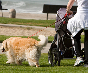 Woman walking with dog and baby