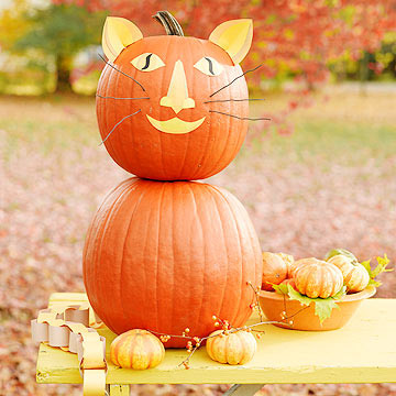 No-Carve Cat