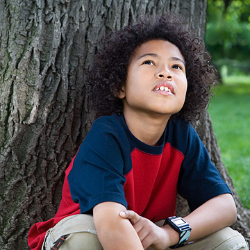 little boy sitting on tree looking up