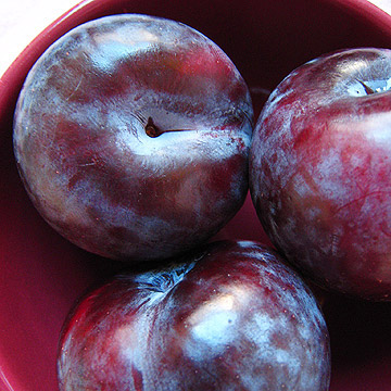 How to Make Plum Puree for Babies