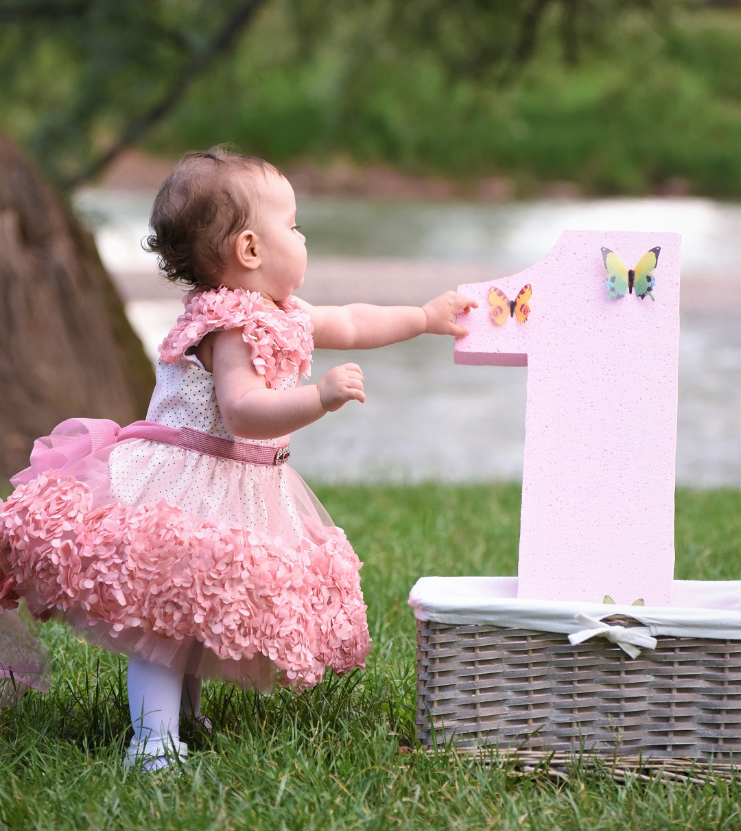 Baby Girl In Pink Dress First Birthday Outside Grass
