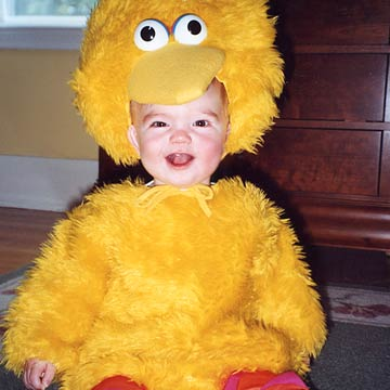 Ryan Big Bird
