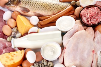 Is It OK For Kids to OD on Saturated Fat? 37735