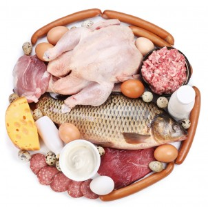 Protein and Children: Why Less May Be More 37741