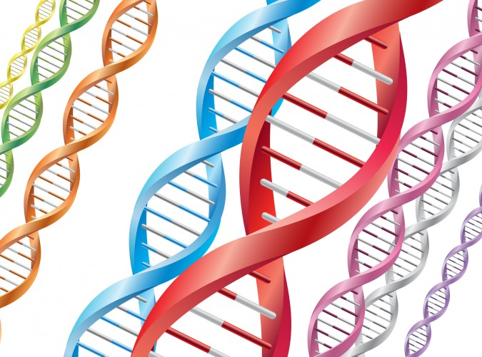 Why the Jscreen Genetic Test Is Important for Your Baby
