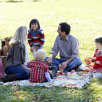 Family at a picnic