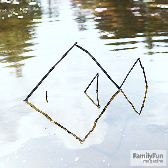 Fish shape made of sticks in water