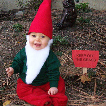 garden gnome Halloween costume