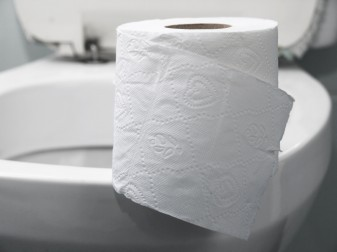 toilet and toilet paper 41758