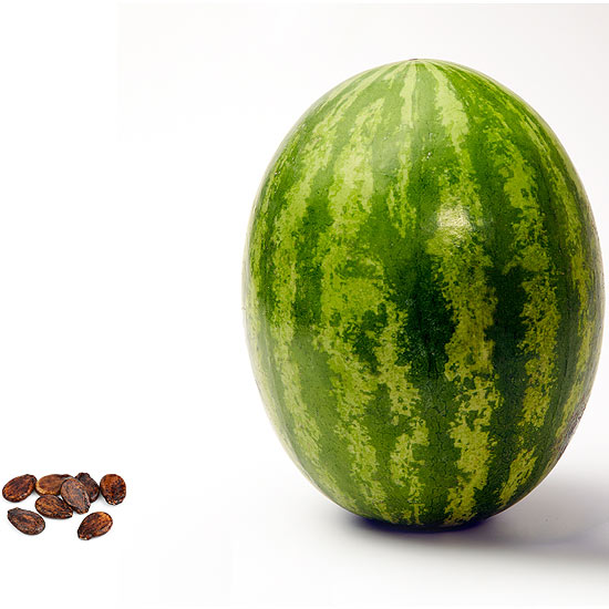 How Big Is My Baby This Week Here S Your Baby Fruit Size Chart