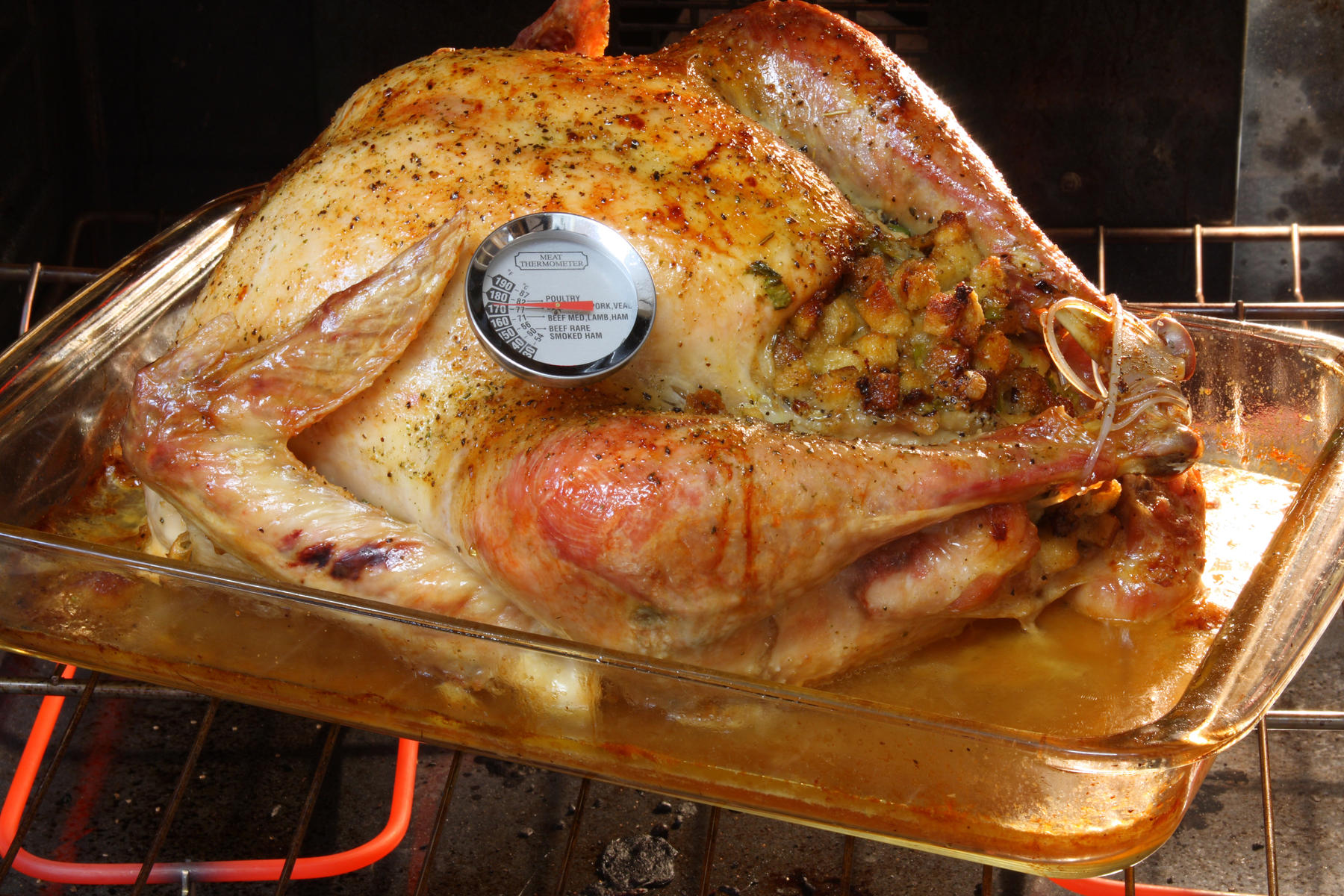 Turkey in Oven with Thermometer